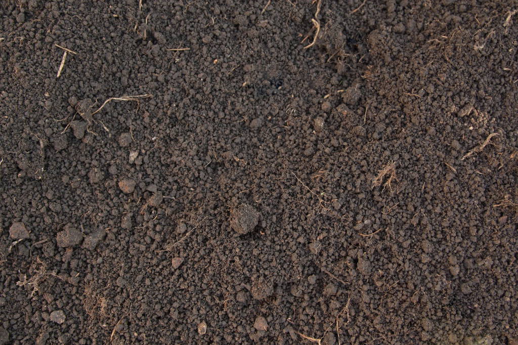 http://www.dreamstime.com/stock-photo-pattern-humus-soil-image16451510